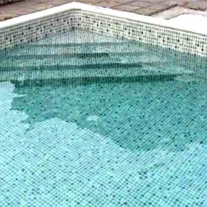 Conseils pour choisir son liner de piscine for Piscine liner vert